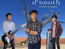 D'SOUTH BAND