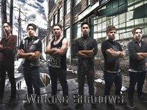 Waking Shadows