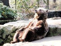SabanacThe Bear