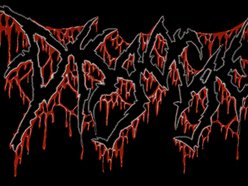 Image for Disgorge