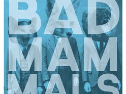 Image for Bad Mammals