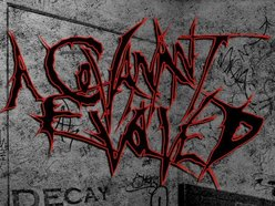 Image for A Covanant Evolved