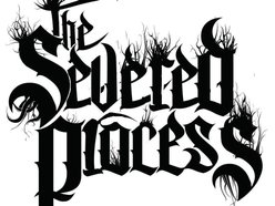 Image for The Severed Process