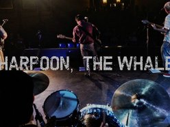 Image for Harpoon, the Whale