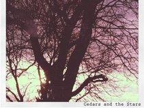 Cedars and the Stars