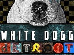 White Dogg Detroit