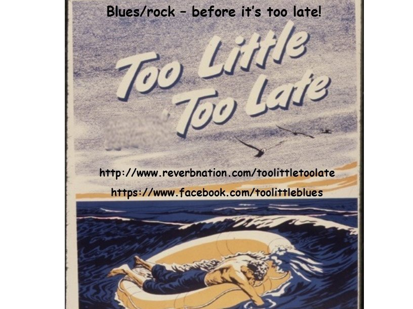 Image for Too Little, Too Late