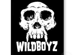 The Wild Boyz