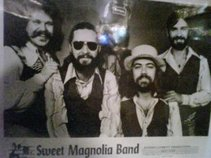 Sweet Magnolia Band