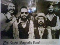 Sweet Magnolia Band