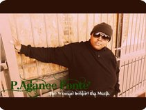 P.Aganee Fonte'