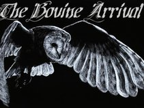 Shane Hamilton/The Bovine Arrival/Fire Bullets