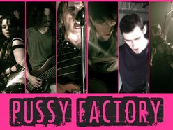 Image for Pussy Factory