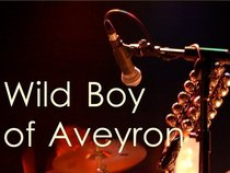 Wild Boy of Aveyron