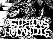 Acidious Mutandis