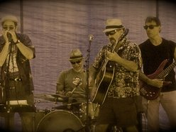 Image for Country Blues Revue
