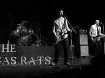 The Gas Rats