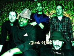 Image for Black Mink