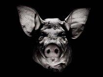 Obsidian Demon Pig