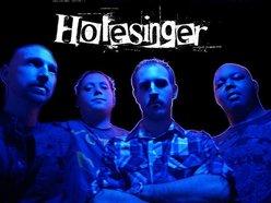 Image for Holesinger
