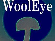 WoolEye