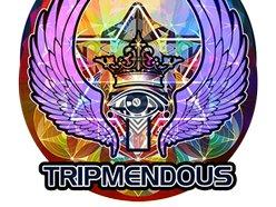 Image for Tripmendous