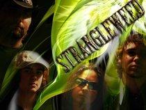 STRANGLEWEED