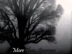Image for More Than Sparrows