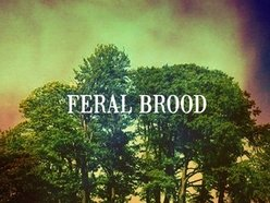 Image for Feral Brood
