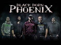 Image for Black Born Phoenix
