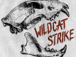 Image for Wildcat Strike