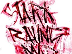 Image for Stark Raving Mad