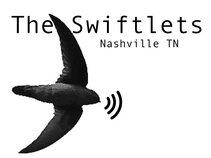 The Swiftlets