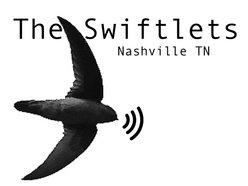 Image for The Swiftlets