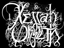 Xejjah Orseth