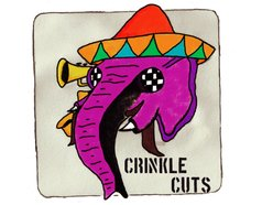 Image for Crinkle Cuts