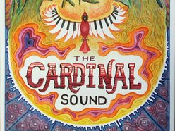 Image for The Cardinal Sound