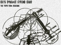 Bats Dynamic String Band
