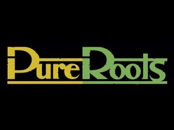 Image for Pure Roots