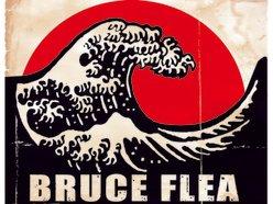Image for Bruce Flea