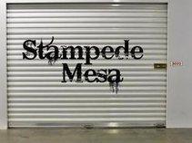 Stampede Mesa