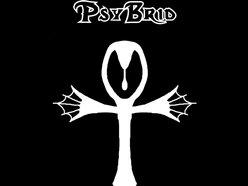 PsyBrid