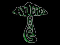 Altered Minds Entertainment