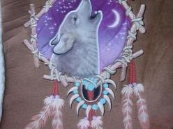 Image for wolf in the dreamcatcher