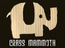 Image for Crass Mammoth