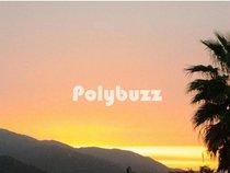 Polybuzz