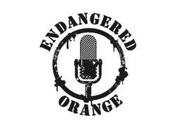 Image for Endangered Orange