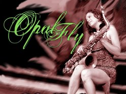 Image for Opal Fly