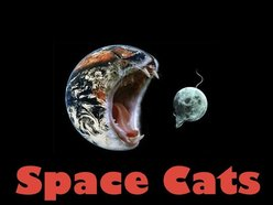 Image for Space Cats