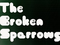 Image for The Broken Sparrows